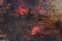 Cat's Paw and Lobster Nebula
